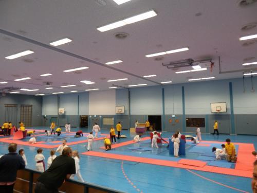 Ilvesheimer Karate-Tag 2012 01