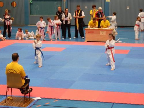 Ilvesheimer Karate-Tag 2012 03