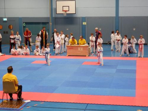 Ilvesheimer Karate-Tag 2012 04
