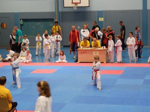 Ilvesheimer Karate-Tag 2012 05