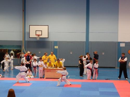 Ilvesheimer Karate-Tag 2012 10