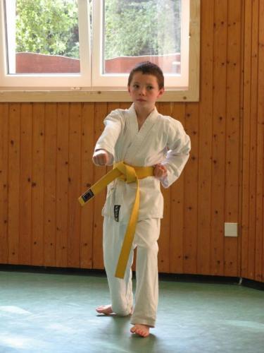 Karatefreizeit Hertlingshausen 2011 12