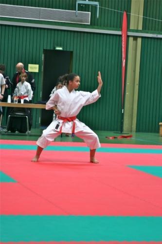 Koellertaler Karate-Cup 2012 02