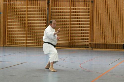 Lehrgang mit Sensei Pino Arcieri 2008 in Birkenfeld (12)