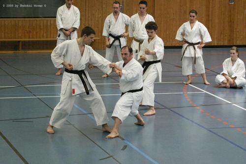 Lehrgang mit Sensei Pino Arcieri 2008 in Birkenfeld (16)