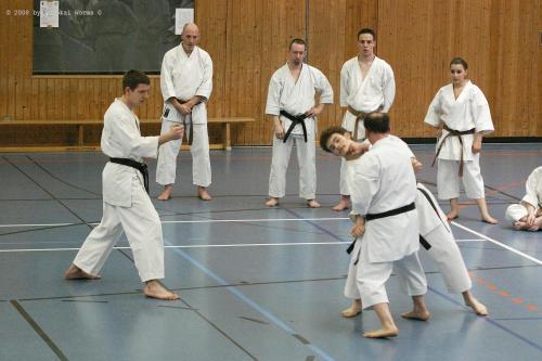 Lehrgang mit Sensei Pino Arcieri 2008 in Birkenfeld (17)