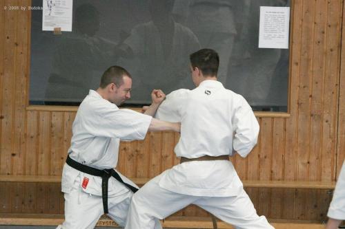 Lehrgang mit Sensei Pino Arcieri 2008 in Birkenfeld (30)