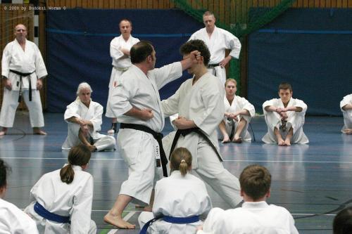 Lehrgang mit Sensei Pino Arcieri 2008 in Birkenfeld (9)