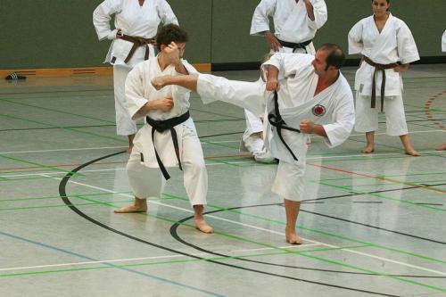 Lehrgang mit Sensei Pino Arcieri 2008 in Wiesbaden (11)