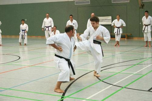 Lehrgang mit Sensei Pino Arcieri 2008 in Wiesbaden (14)
