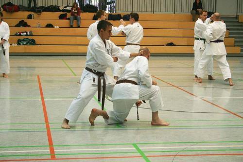 Lehrgang mit Sensei Pino Arcieri 2008 in Wiesbaden (15)