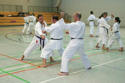 Lehrgang mit Sensei Pino Arcieri 2008 in Wiesbaden (16)