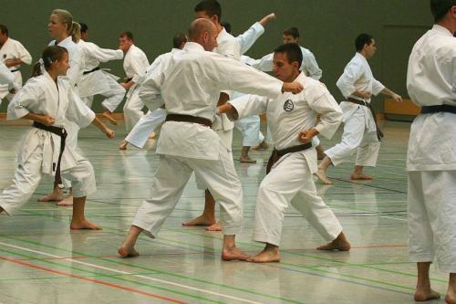 Lehrgang mit Sensei Pino Arcieri 2008 in Wiesbaden (3)