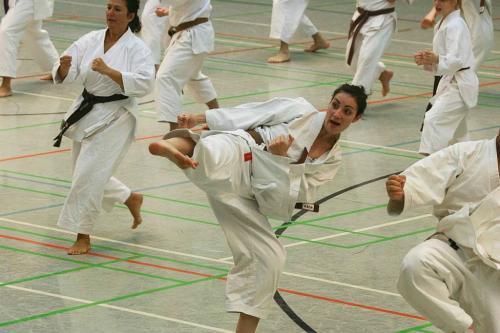 Lehrgang mit Sensei Pino Arcieri 2008 in Wiesbaden (9)