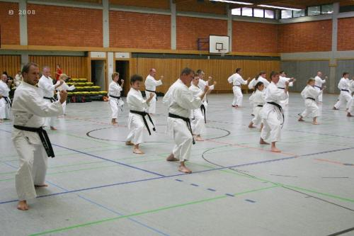 Lehrgang mit Sensei Pino Arcieri 2008 in Zweibrücken (10)