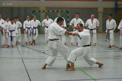 Lehrgang mit Sensei Pino Arcieri 2008 in Zweibrücken (15)