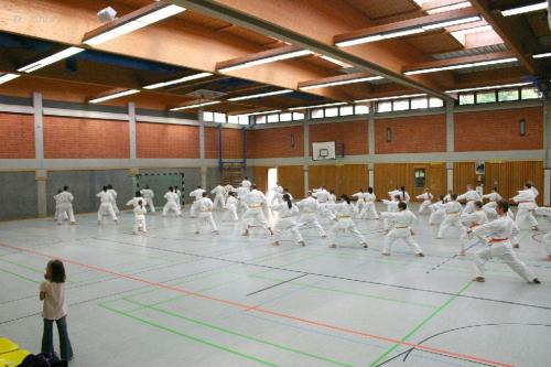 Lehrgang mit Sensei Pino Arcieri 2008 in Zweibrücken (3)