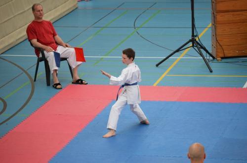 Rhein-Neckar Kids-Cup 2012 10