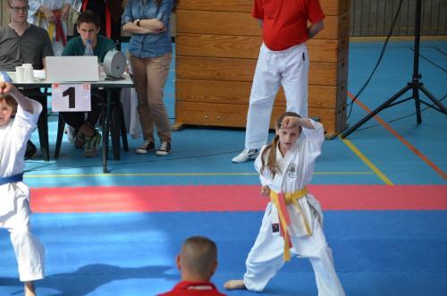 Rhein-Neckar Kids-Cup 2012 11