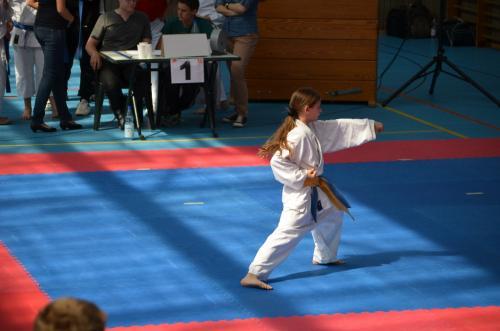 Rhein-Neckar Kids-Cup 2012 12