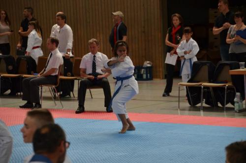 German Kata Cup 2018