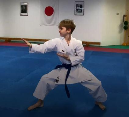 Video der Kata Heian Nidan