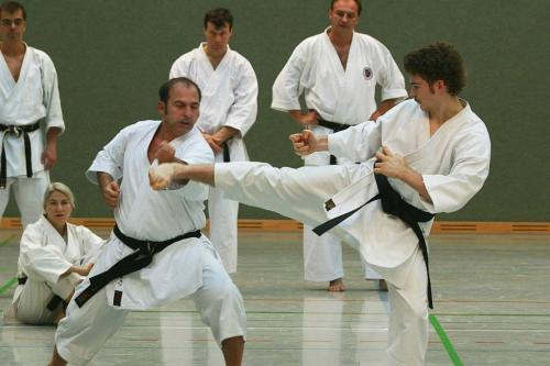 Lehrgang mit Sensei Pino Arcieri 2008 in Wiesbaden